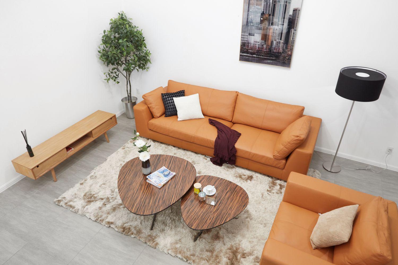 3E0A6241 - Da và vải - Nên chọn chất liệu nào cho sofa nhà bạn?
